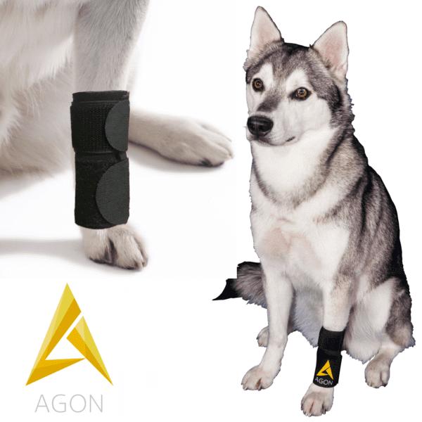 מגן תומך לרגל קדמית לכלב